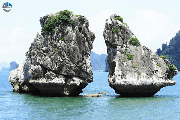 Tour Hạ Long 1 Ngày Giá Rẻ Khởi Hành Từ Hà Nội