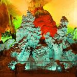 tour-dong-phong-nha-1-ngay