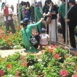 khu-du-lich-trang-trai-rau-va-hoa