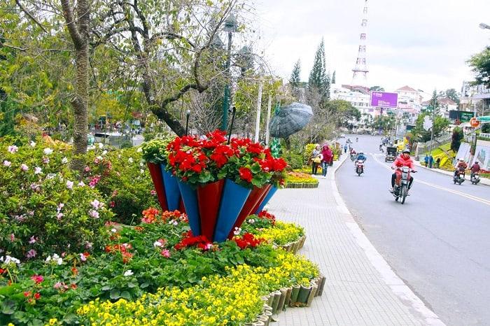 Festival hoa Đà Lạt 2019 : Thời gian tổ chức, và Lịch trình chi tiết.
